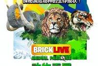 乐高迷专场|这是一场专属于乐高迷的盛宴,更是一场关于濒危动物保护的探索!