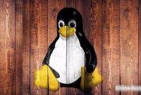卓越分享丨最受欢迎 Linux 发行版,上榜的都有谁?