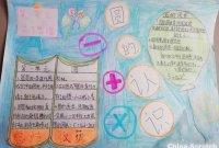 【思维导图】小小的纸,画出美美的数学世界!